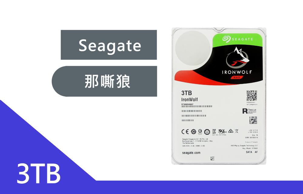 Seagate【那嘶狼IronWolf】3T